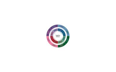 Types de personnalité – la typologie jungienne comme outil d'orientation (MBTI)